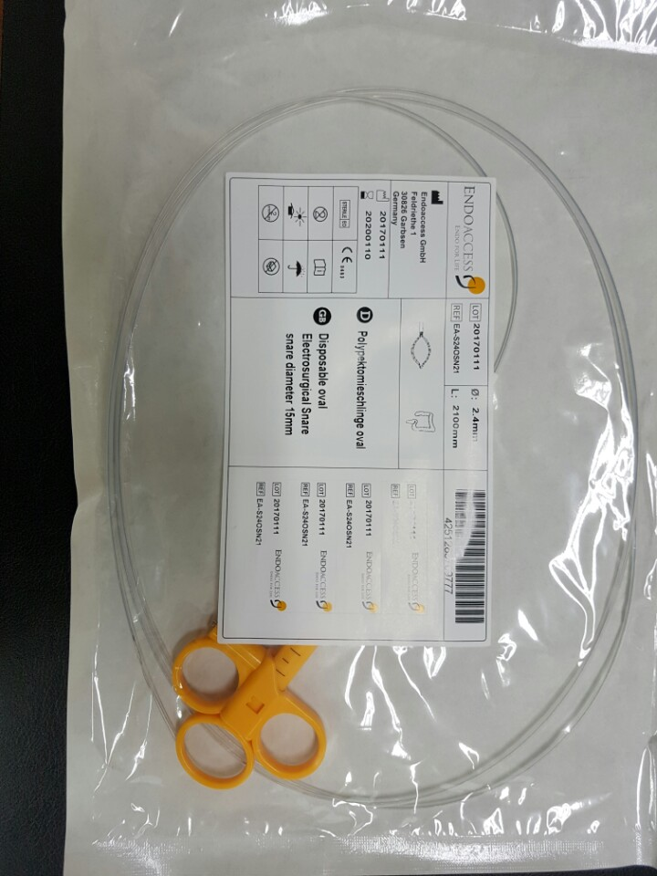 (Endoaccess) Disposable Oval Snare - Standard